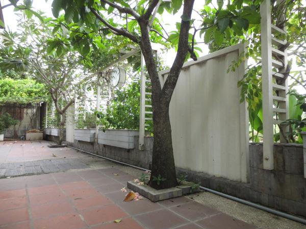 Khoảng sân tận dụng những vách container cho cây leo quanh nhà.