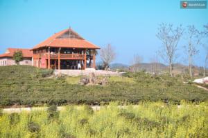 Mộc Châu Arena còn có cả khu nhà sàn và bar. Đây là khu nhà sàn có thể chứa đến 12-15 khách.
