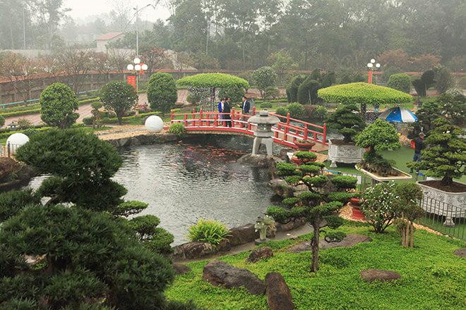 Hồ cá Koi được kiến trúc sư nổi tiếng tại Nhật thiết kế và hoàn thiện trong vòng 3 tháng