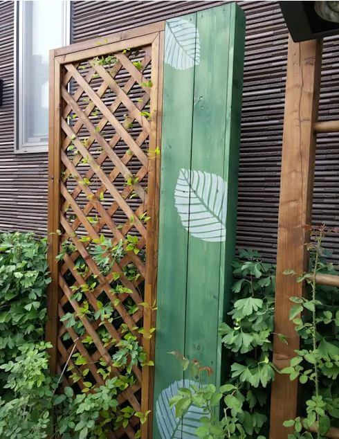 Tận dụng những khung cửa gỗ bỏ đi - Thiết kế sân vườn đẹp
