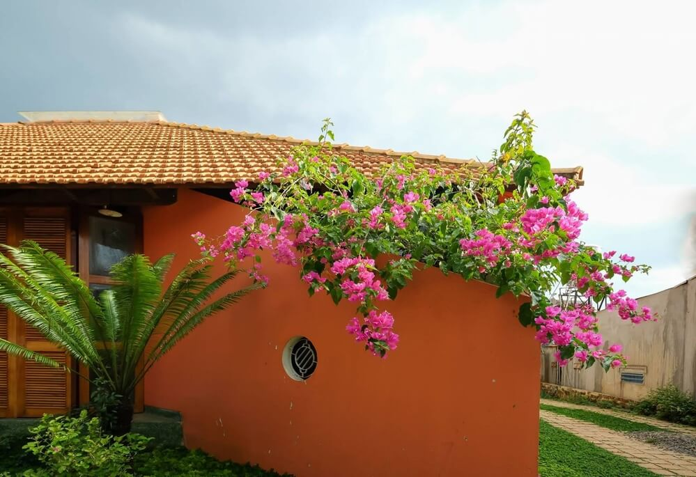 Ngôi nhà mái đỏ một tầng tuyệt đẹp tại Lâm Đồng - 2