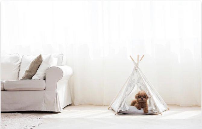 Phong cách nhã nhặn hoặc mạnh mẽ - Nhà cho thú cưng - 3