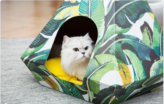 """Phong cách """"làm lố, màu mè"""" - Nhà cho thú cưng"""