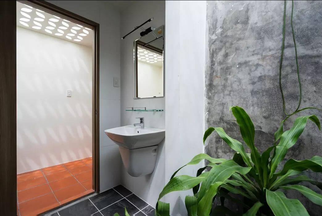 10 loại cây xanh nên trồng trong phòng tắm thêm phần sinh động - 2