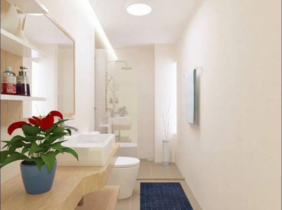 10 loại cây xanh nên trồng trong phòng tắm thêm phần sinh động - 7