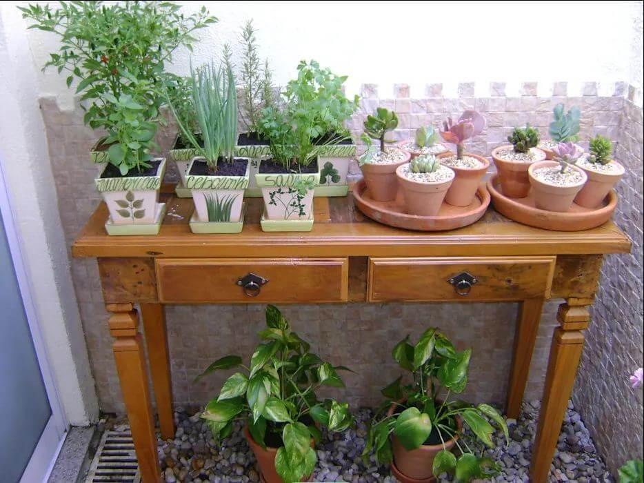 Trồng cây tại ban công - Không gian xanh trong nhà