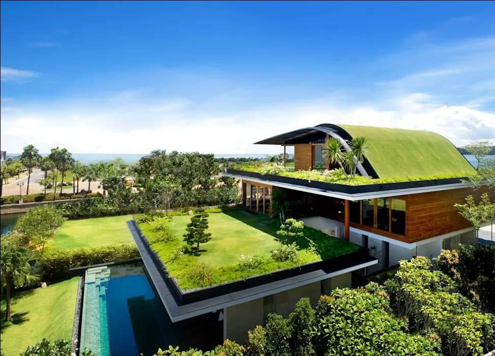Xanh trên mái nhà - Không gian xanh trong nhà