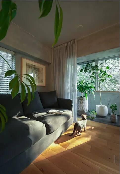 Phòng khách ấm cúng - Kiểu nhà đẹp