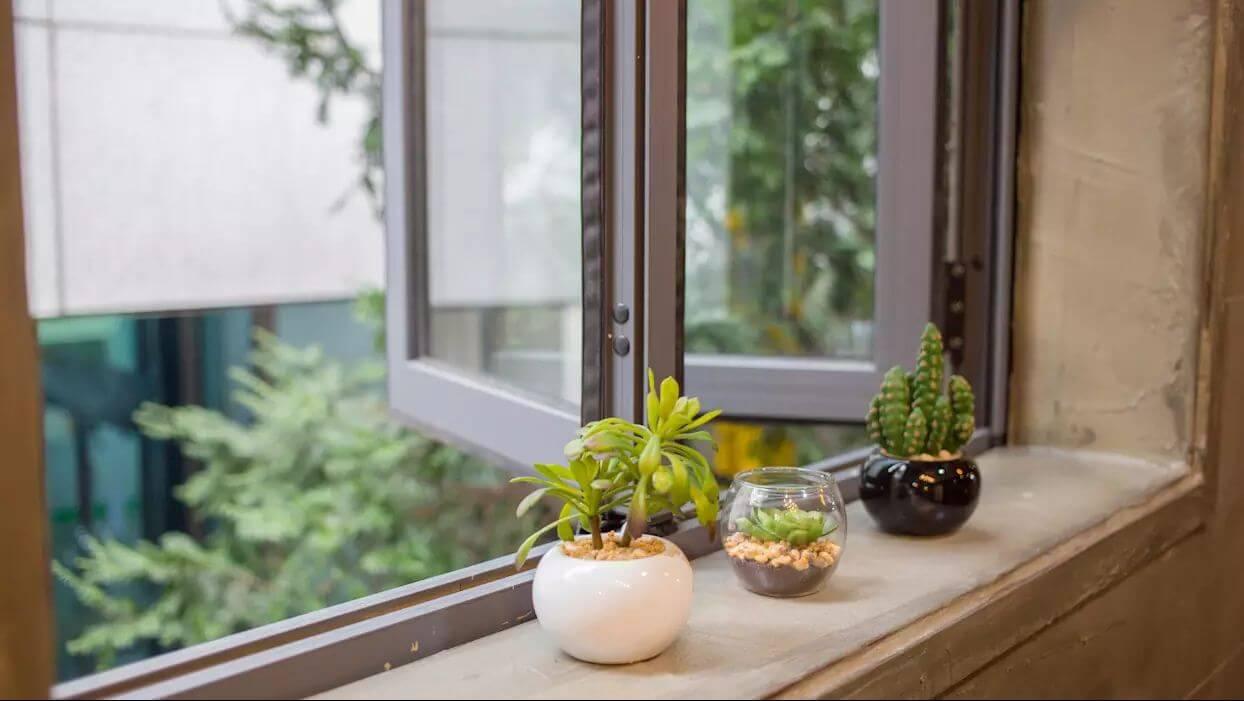Tận dụng những chậu cây cảnh - Trang trí bệ cửa sổ