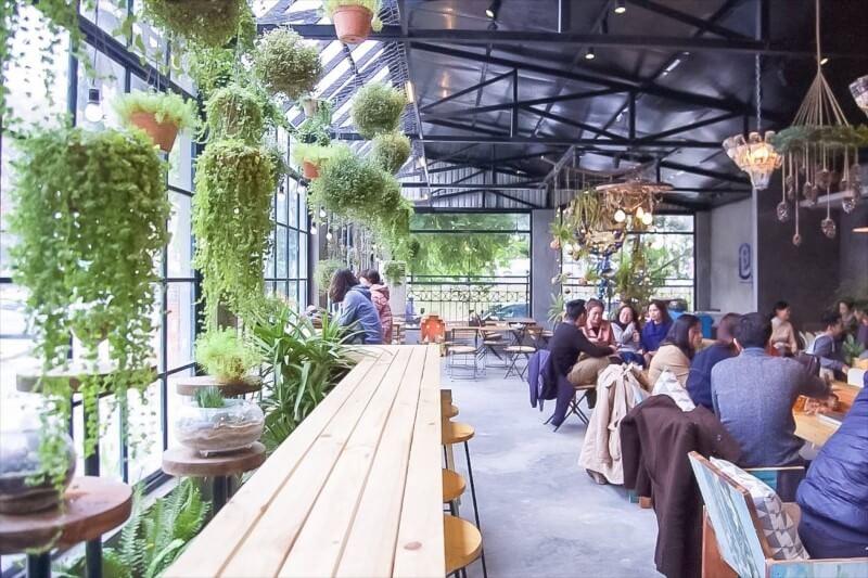 Cây - Thiết kế quán Cafe đẹp