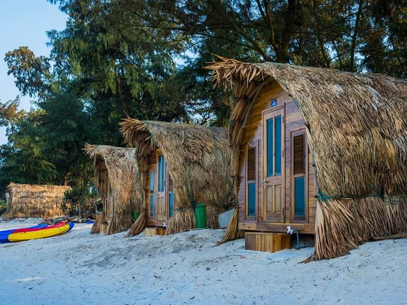 Homestay hình tổ chim được xây dựng bằng gỗ và mái lá