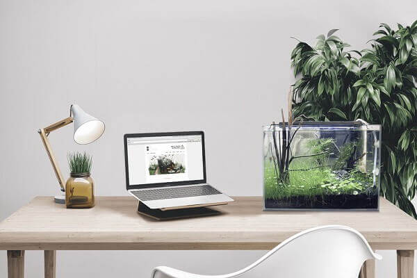 Hình ảnh: Vị trí cần tránh khi đặt bàn làm việc - Sắp xếp bàn làm việc theo phong thủy